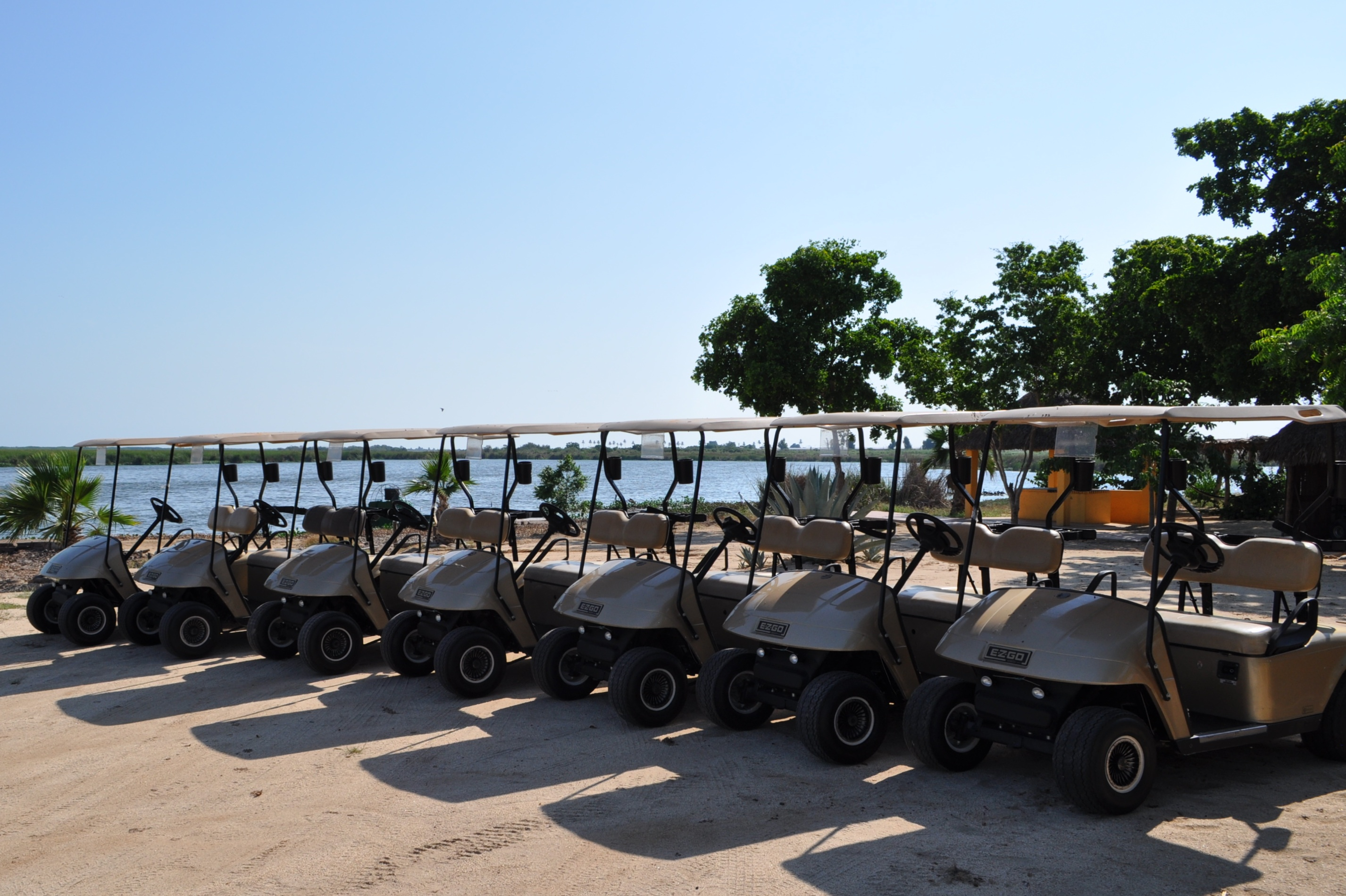 Golf carts DSC_0366